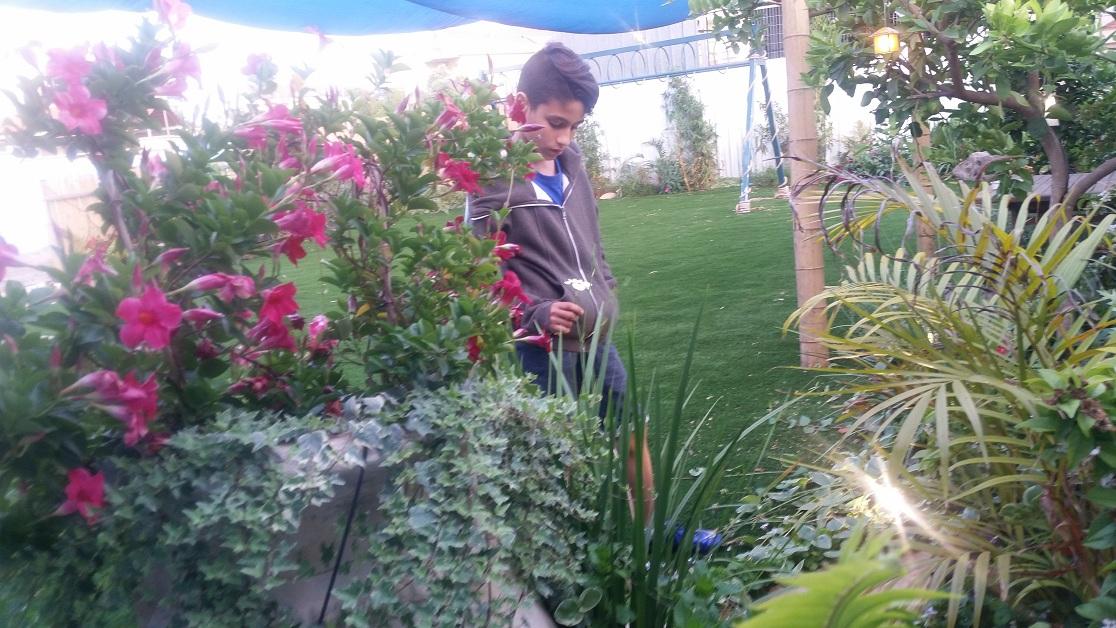 איתי הדוגמן בין הצמחים והכד
