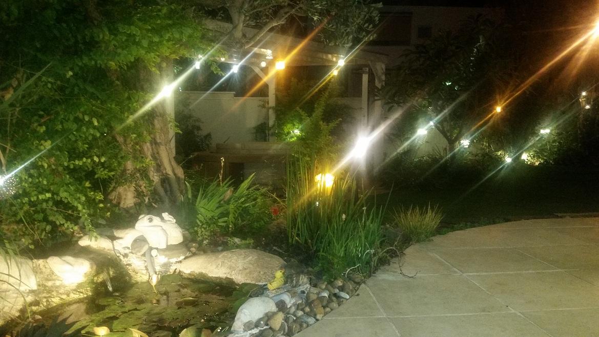 מגוון גופי תאורה תלויים מהעצים
