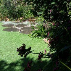 הכנת הגינה לקיץ – 5 טיפים לטיפול בגינה לקראת עונת השמש